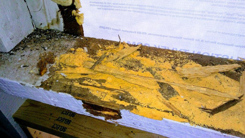 dry rotted ledger board