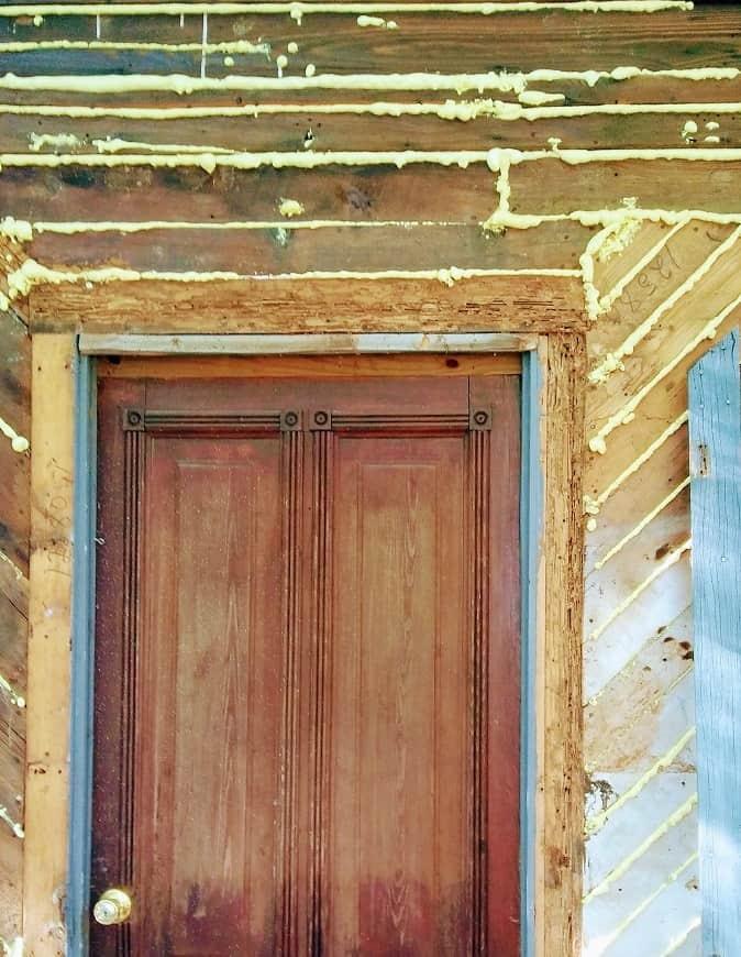 termite damage to door frame