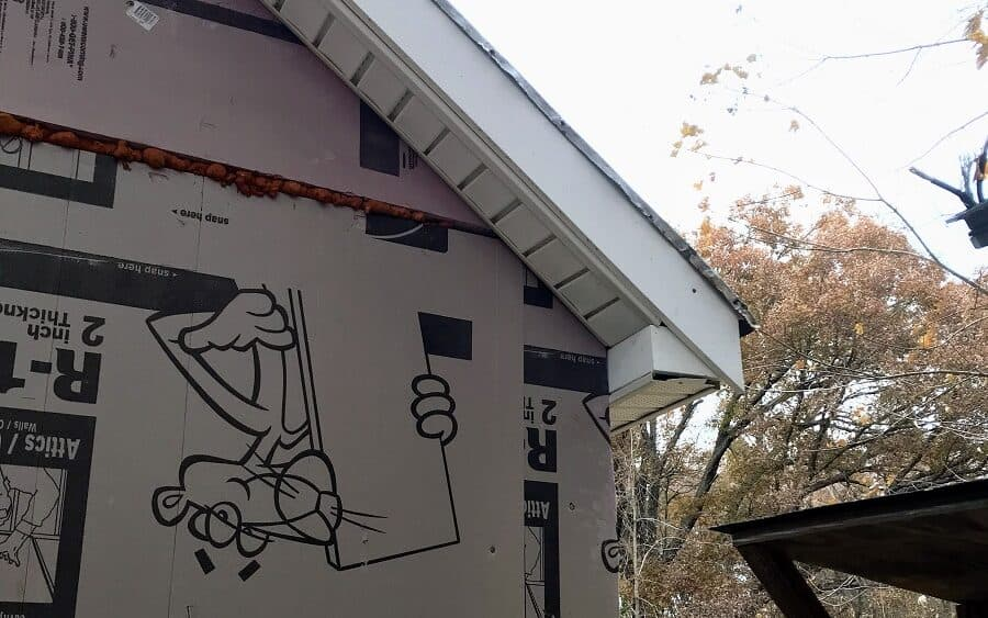 bird boxes and soffit