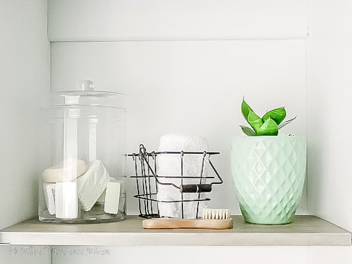 linen cabinet shelf with glass jar and plant